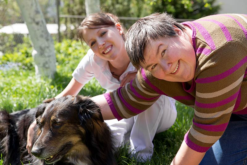 Caring for Animals - This is my passion